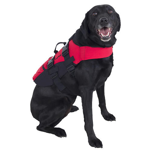 photo: NRS Canine Flotation Device (CFD) dog life jacket
