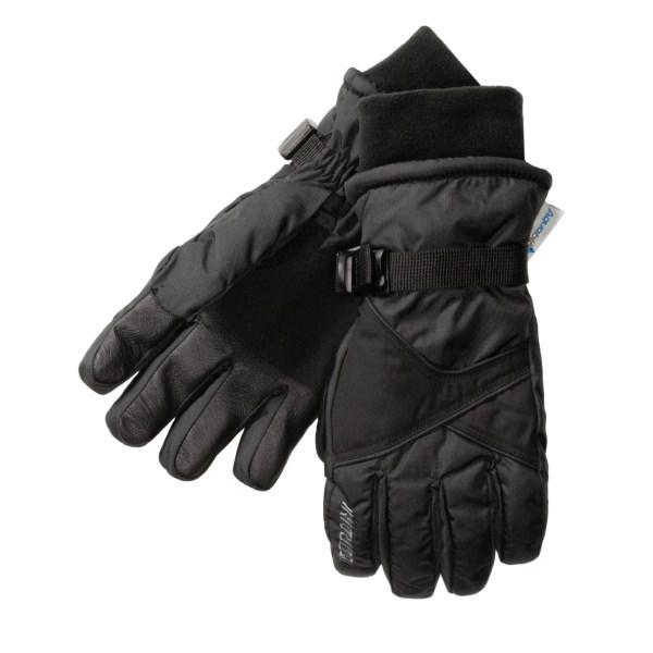 photo: Gordini Aquabloc Promo II  Gloves insulated glove/mitten