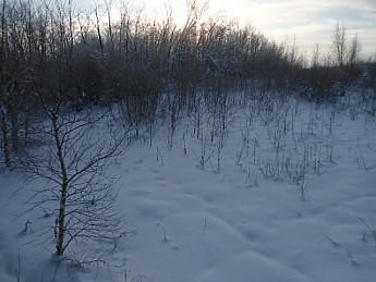 CE-Lee-8-December-2012-016.jpg