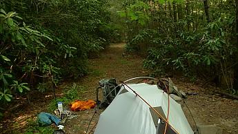 TRIP-122-430.jpg