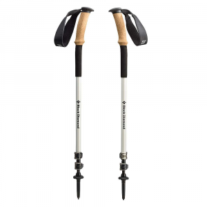 photo: Black Diamond Alpine Ergo Cork rigid trekking pole