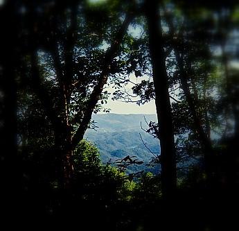 overlook-north-of-little-fodderstack.jpg