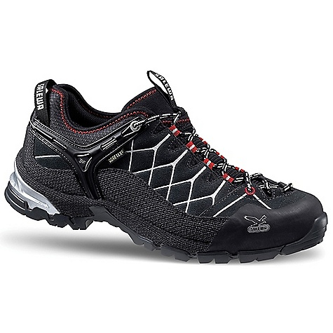 photo: Salewa Men's Alp Trainer GTX trail shoe