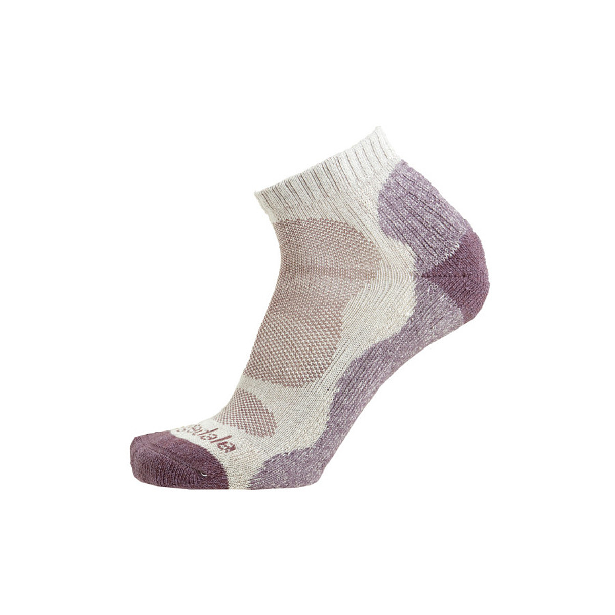 photo of a Bridgedale running sock