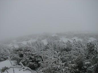 rime-ice-above-treeline.jpg