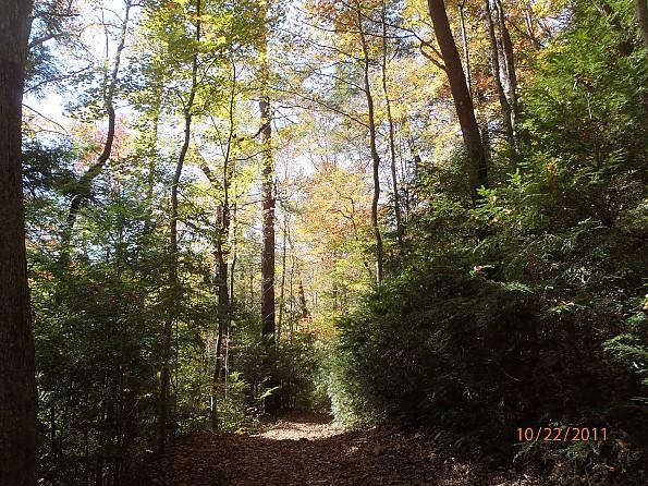 Fall-4-2011-292.jpg