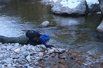 Drinking-from-Granite-Creek-GTNP.jpg