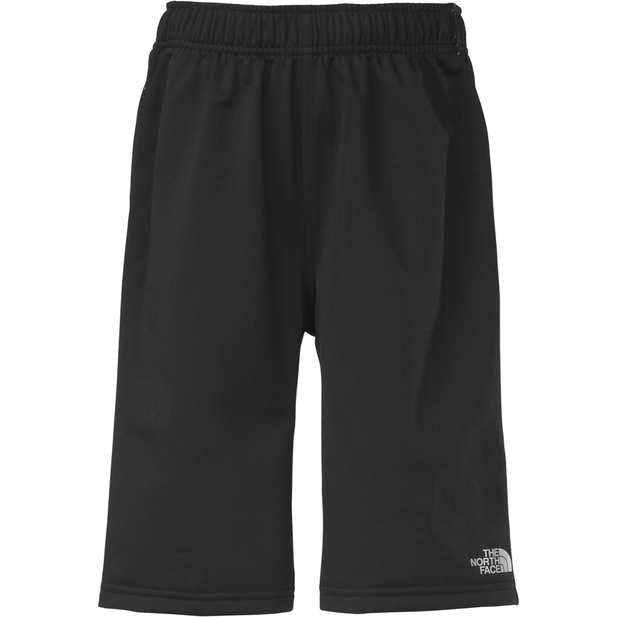 photo: The North Face NFP Shorts active short