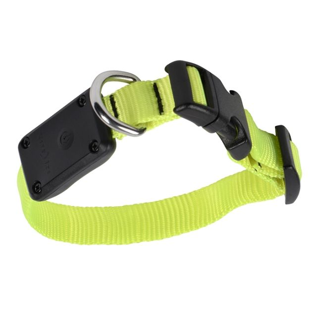 photo: Nite Ize Nite Dawg LED Dog Collar dog collar