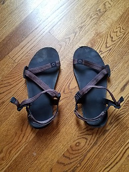 5339480a873f Xero Shoes Z-Trail Reviews - Trailspace