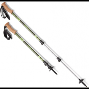 photo: REI National Park Service Traverse PL Cork Trekking Poles - Pair rigid trekking pole