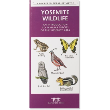 Waterford Press Yosemite Wildlife: An Introduction to Familiar Species of the Yosemite Area