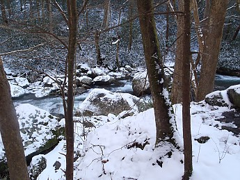 Winter-Hike2012-019.jpg