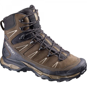 Salomon X Ultra Trek GTX