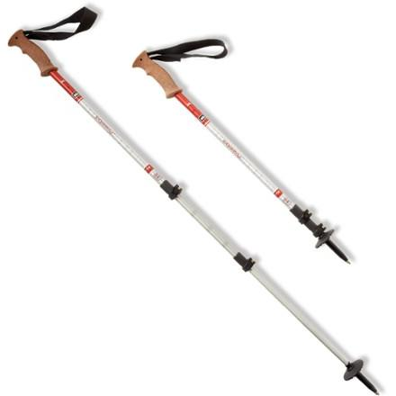 photo: REI Traverse PowerLock rigid trekking pole