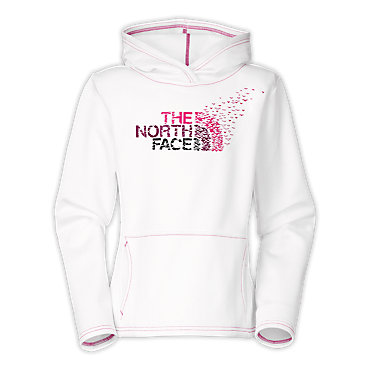 photo: The North Face Gully Performance Hoodie fleece top