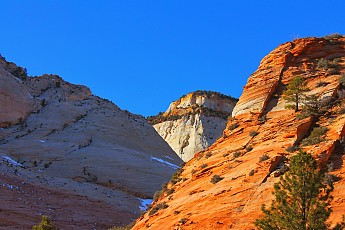 IMG_1946-East-Zion-late-afternoon-contra