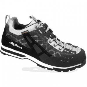 photo of a Alpina footwear product
