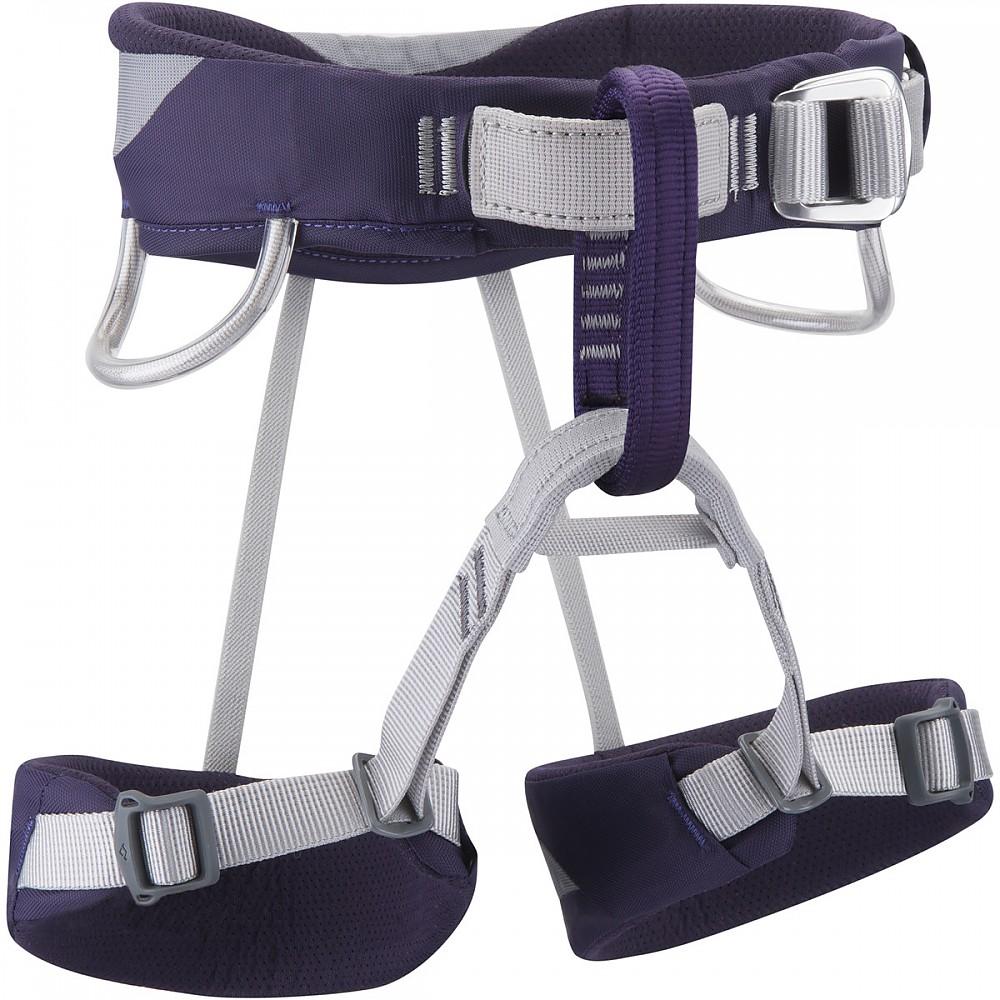photo: Black Diamond Wiz Kid sit harness