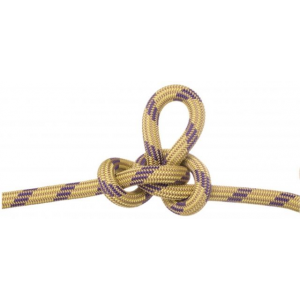 photo: Edelweiss Element II 10.2mm dynamic rope