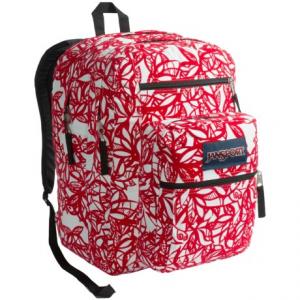 photo: JanSport Big Student Pack daypack (under 2,000 cu in)