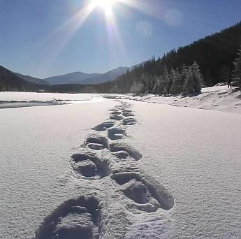 snowshoeing_tracks.jpg