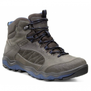 photo of a Ecco hiking boot