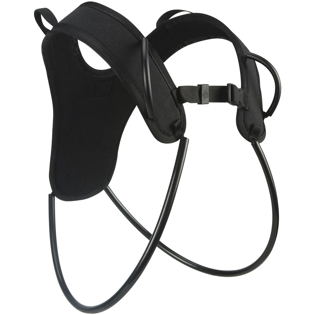 photo: Black Diamond Zodiac Gear Sling gear sling