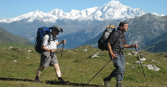 trekking-poles.png