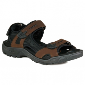 photo of a Ecco sandal