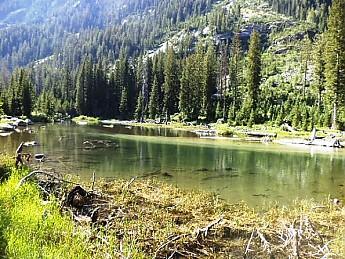 Cascade-Creek-Cascade-Canyon-GTNP-WY.jpg