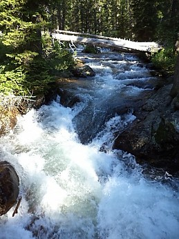 Cascade-Creek-Cascade-Canyon-GTNP-WY-4.j