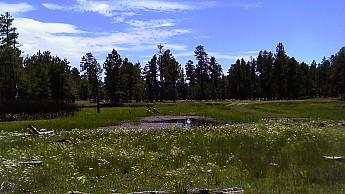 a1-allen-lake.jpg
