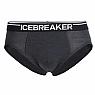 photo: Icebreaker Anatomica Brief