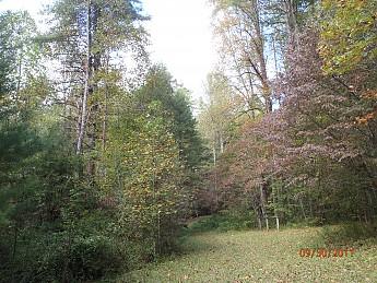 Fall-Trip-1-043.jpg