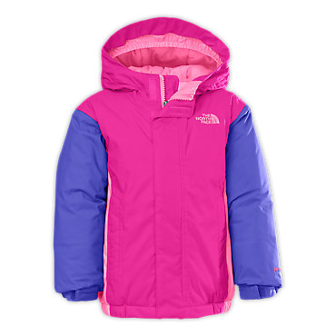 The North Face Delea Insulated Jacket