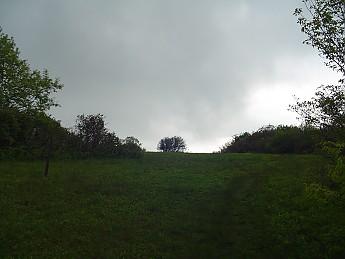 Joyce-Kilmer-Trip-2012-116.jpg