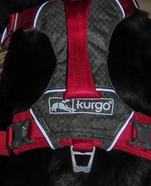 kurgo-reflective.jpg