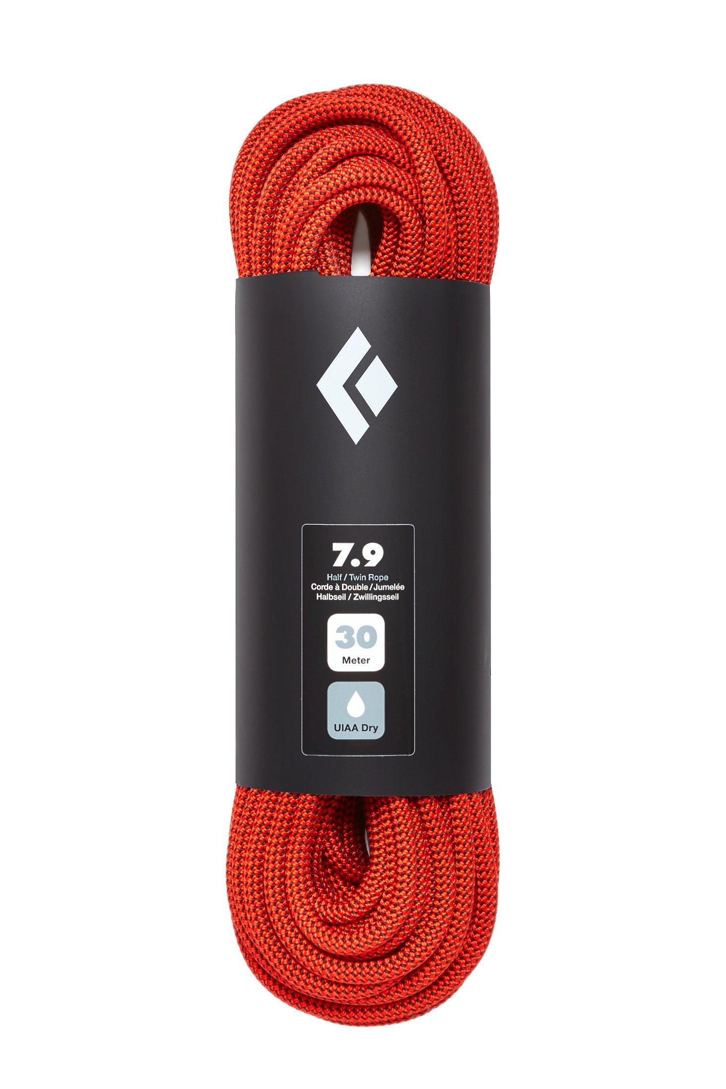 photo: Black Diamond 7.9 Dry Climbing Rope dynamic rope