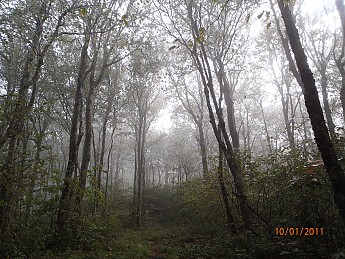 Fall-Trip-1-094.jpg