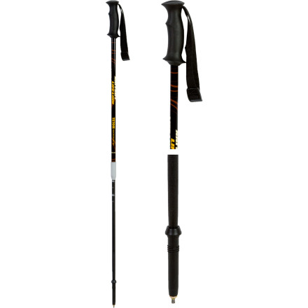 photo: Life-Link Teton Backcountry alpine touring/telemark pole