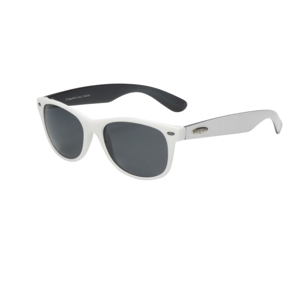 Coyote Sunglasses D-21 Sunglasses