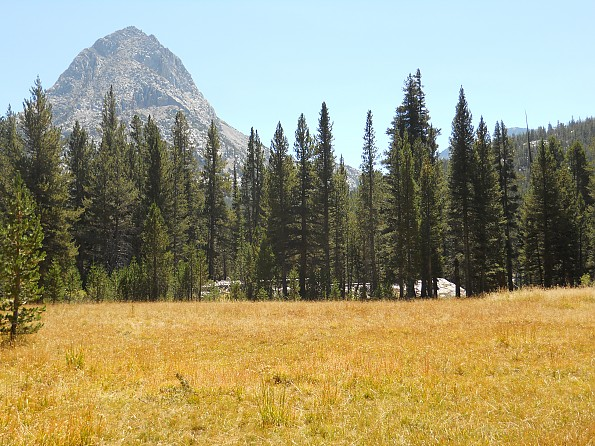 The-Hermit-from-Colby-Meadow.jpg