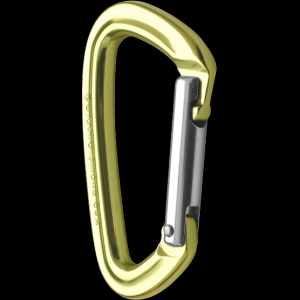 photo: Black Diamond Positron Straight non-locking carabiner