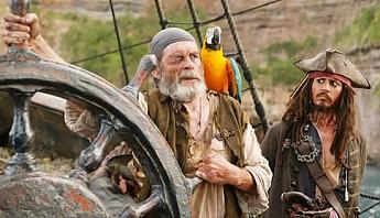 parrot-pirates02.jpg