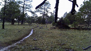 c7-mud-canal-after-storm.jpg