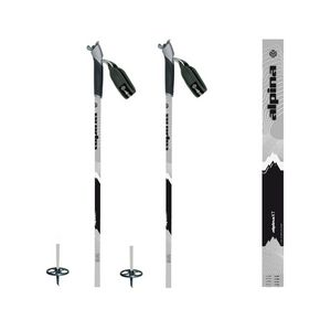 photo: Alpina XT nordic touring pole