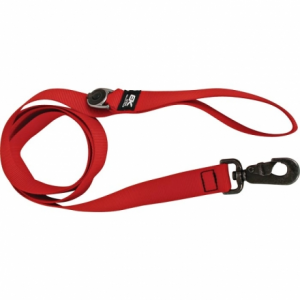 EK Big Wolf Leash w/Led Light