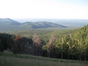 Western-Flagstaff-from-Weatherford-Trail