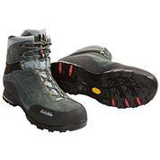 photo of a Raichle hiking boot